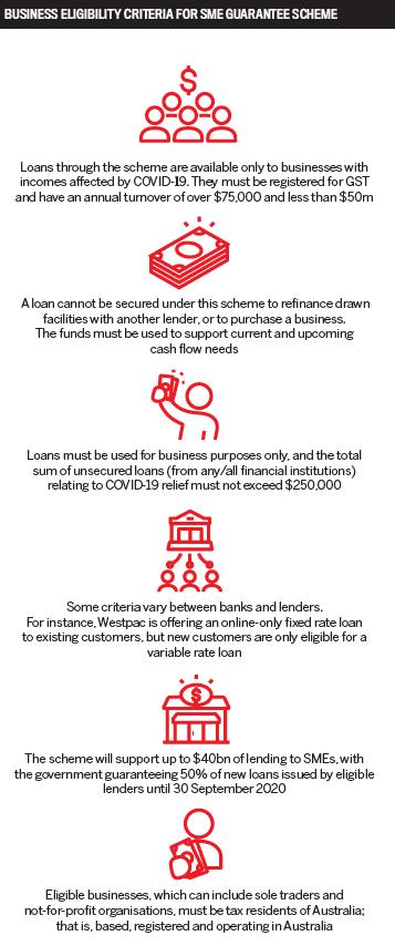 Business eligibility criteria for SME guarantee scheme