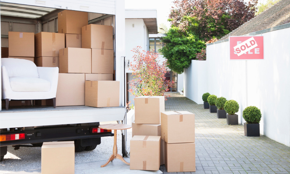 How much could a professional removalist cost you?