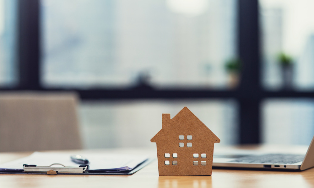 First-home buyer activity still elevated — NAB study