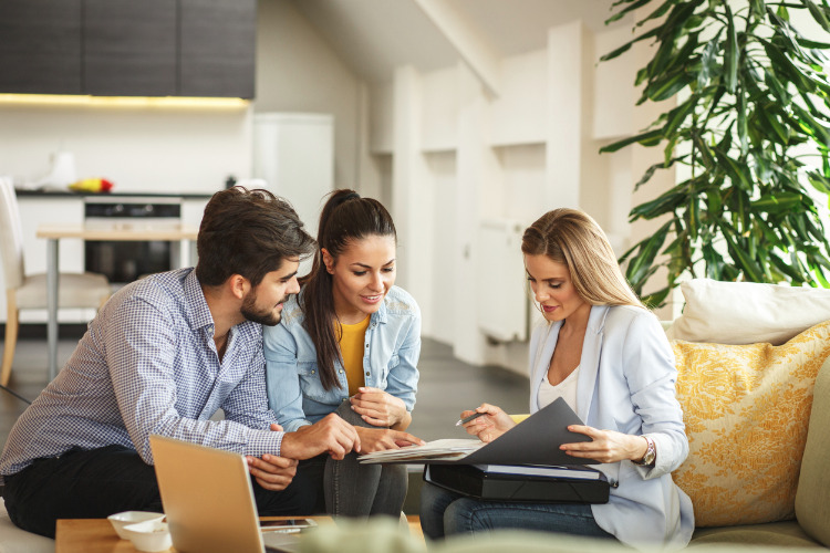 What does a property conveyancer do?