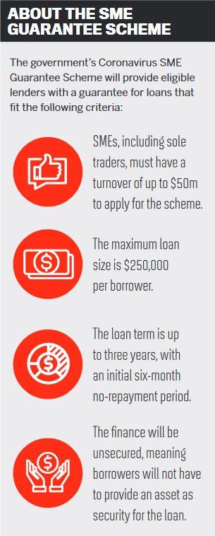 About the SME Guarantee Scheme