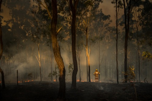 Bushfire recovery and prep work for 178 schools in NSW on track
