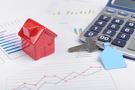 House prices hit record high – REINZ
