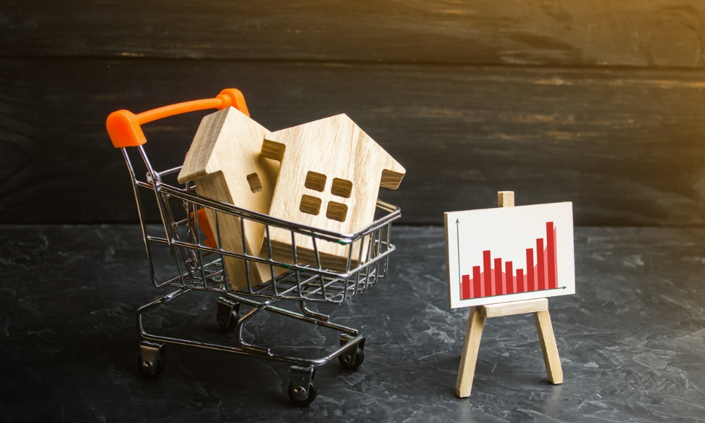 REINZ and Alexander deliver the latest buyer activity in the housing market