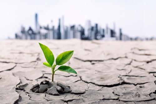Buildings in focus as Toronto declares climate change emergency