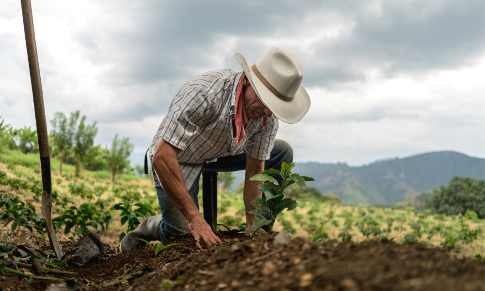 Court rejects beneficiary's attempt to exercise will's option to buy testator's farming business