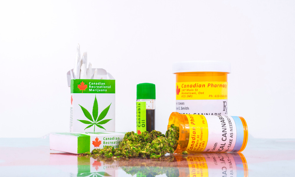 N.L. court discusses employer's duty to accommodate disability of employee who uses medical cannabis