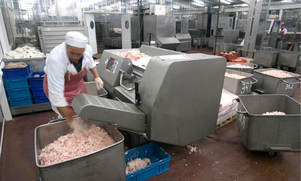 Funding helps with skills gap in food and beverage processing