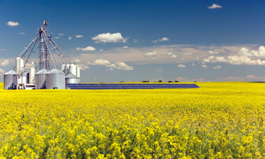 Alberta overhauls workplace rules for farms