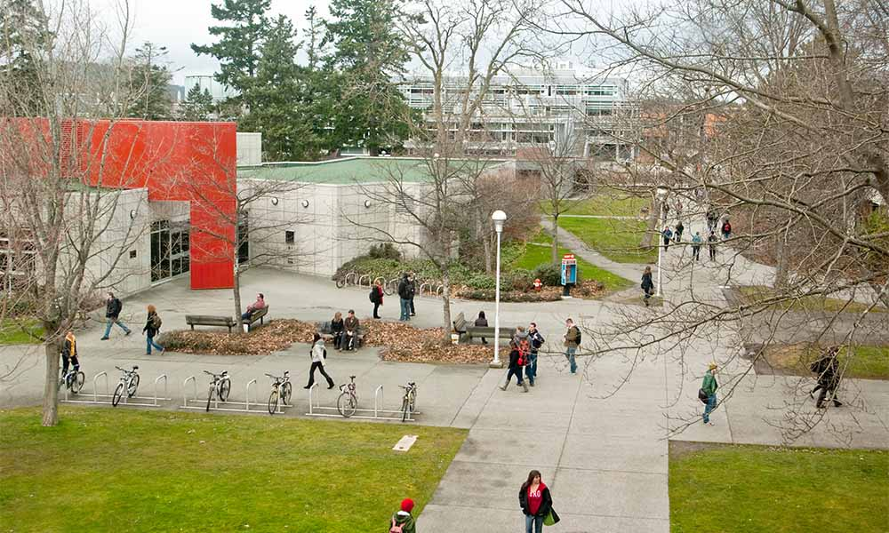 Campus recruitment shifts to virtual world