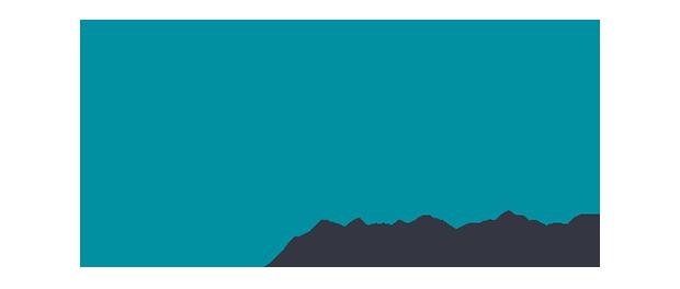 Teal & Co. Inc.