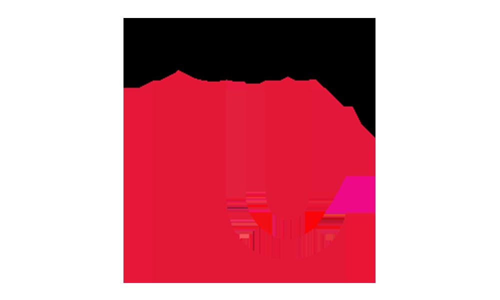 York University - School of Human Resources Management