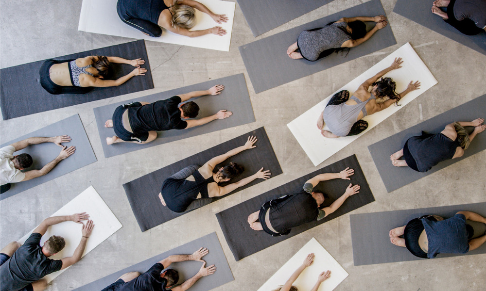 Do wellness programs work?