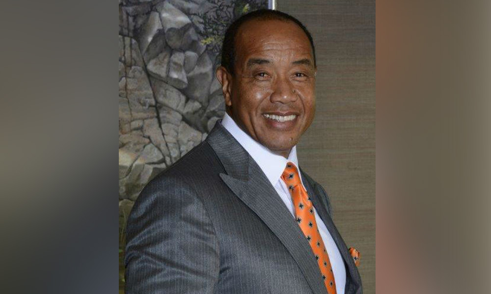 Michael Lee-Chin, Portland Holdings/Mandeville Group