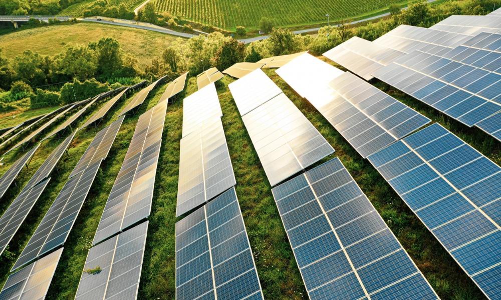 Investors must do more to drive greener economy study reveals