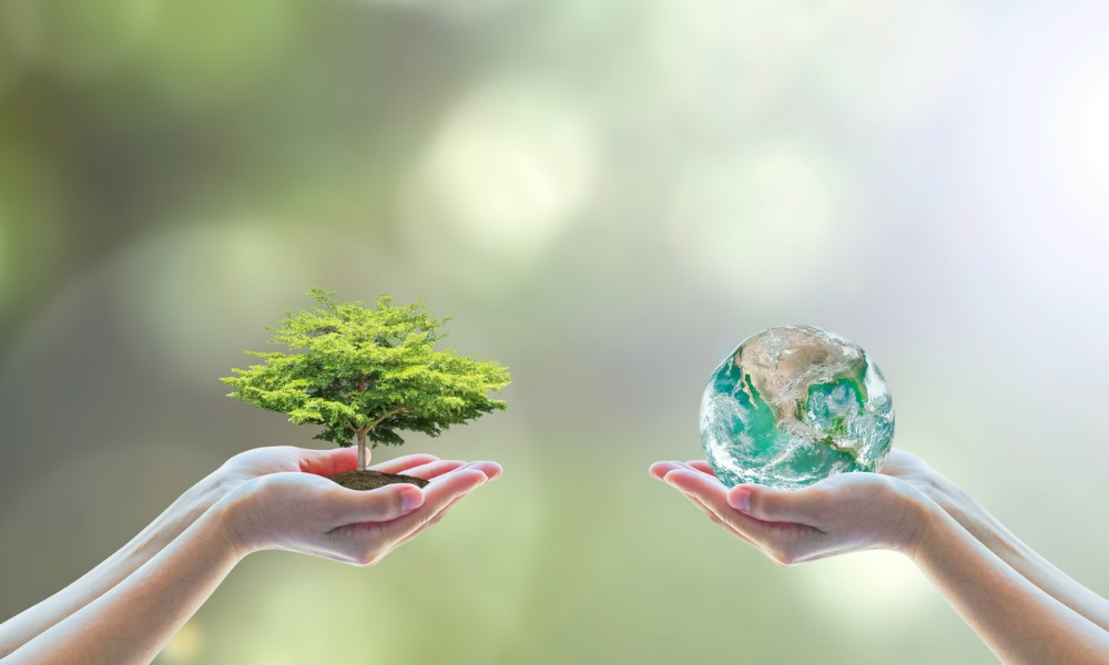 Planting seeds of sustainability in retail portfolios