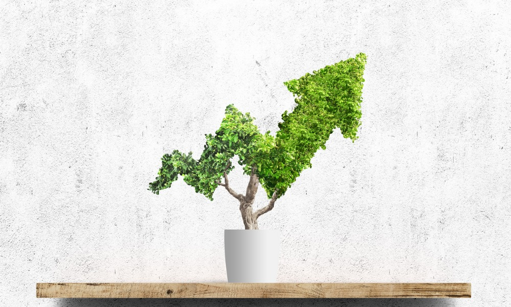 Most Canadian asset managers still lacking in impact investment