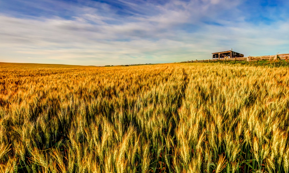 The growing investment appeal of Canadian farmland