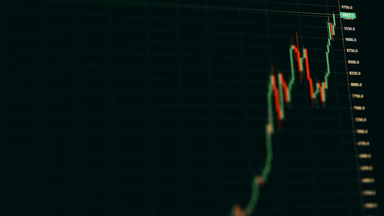 Advisors and investors turn bearish on volatile Bitcoin