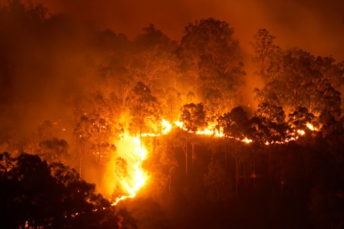 Insurance for properties in high-risk wildfires zones has