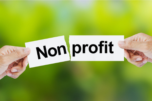 Non-profit insurance sector