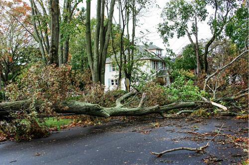 Hurricane Laura damage estimates revealed