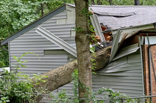 Massive insured losses from Hurricane Zeta revealed