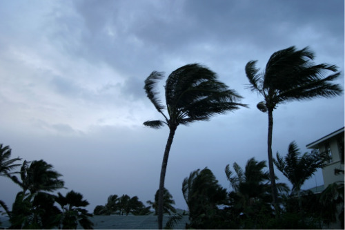 Insurers on standby as major hurricane looms