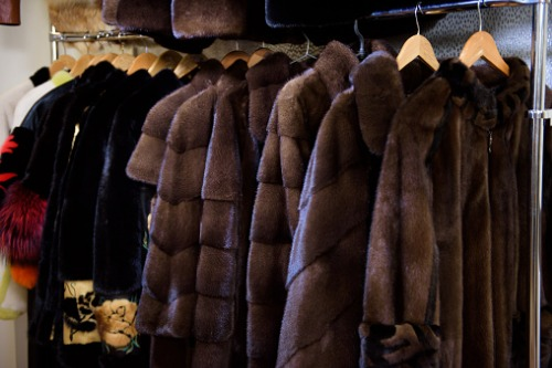 Furtive fraudster forages for fortune with fake fur filing