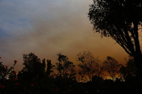 Millions of wildfire-prone homes in California could lose insurance this year