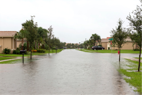 Florida natives underpaying for flood insurance – study