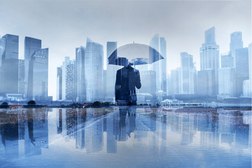 Study reveals common insurance blind spots