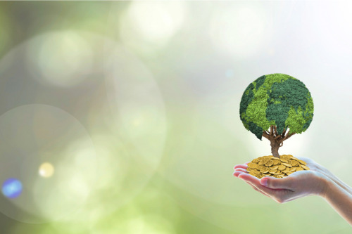 Solvency II reform could spur insurers' interest in ESG assets – Fitch