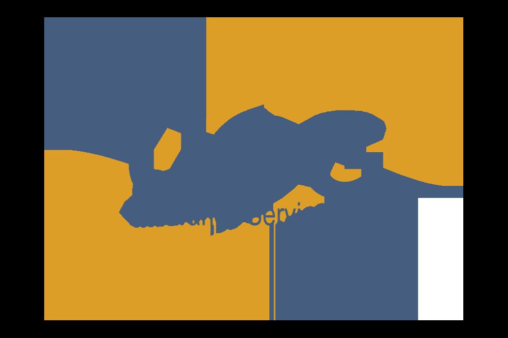 USG Insurance Services