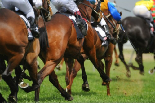 Howden enters five-year official partner deal with Ascot Racecourse