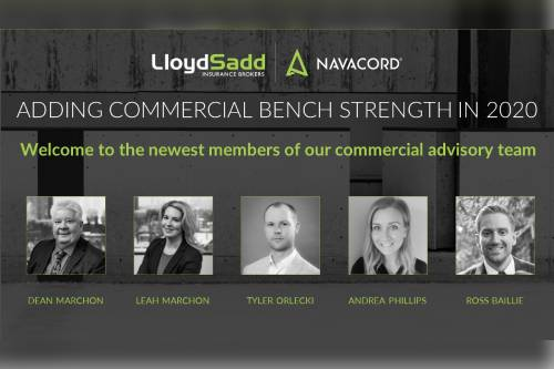 Lloyd Sadd adds significant commercial bench strength in 2020