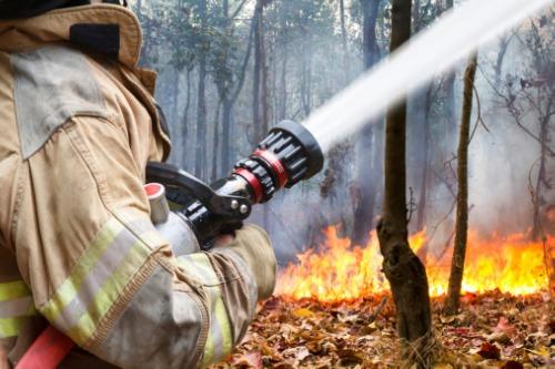 The Co-operators invites Canadians to participate in wildfire preparedness event