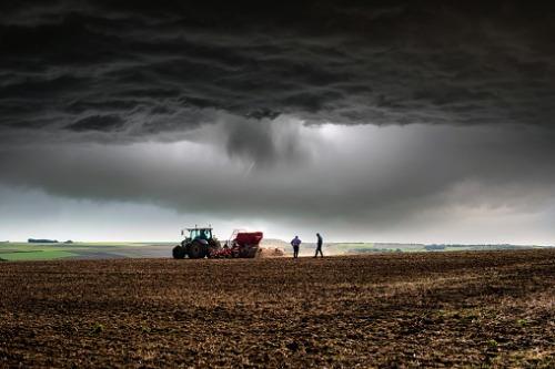 PEI farmers assess Dorian-related damage