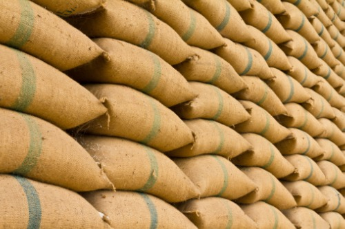 Canada Grains Council receives funding to develop grain exporter insurance