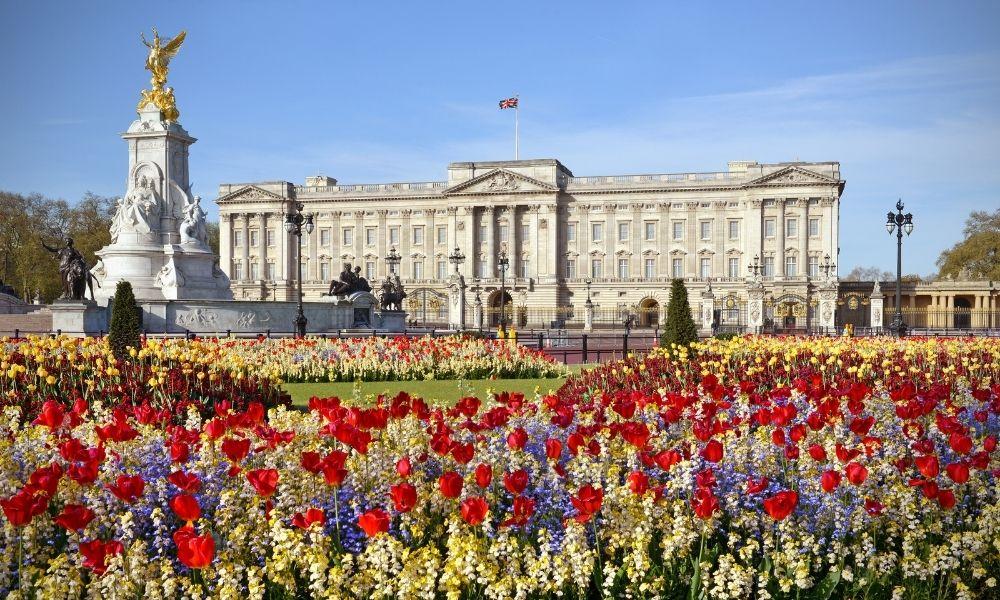 Will Buckingham Palace appoint 'diversity tsar'?