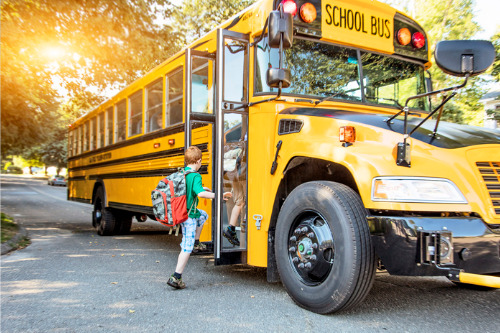Rising premiums could force Alberta school buses off the road, industry association warns