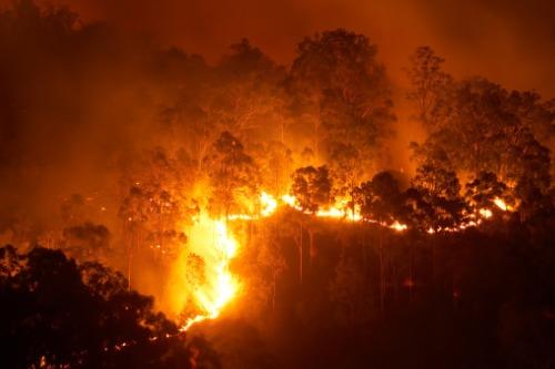 Lake Ōhau fire insurance bill close to $35 million