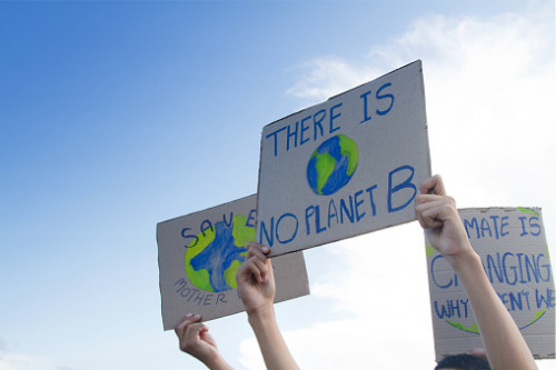 Kiwis want government, businesses to act on climate change – IAG study
