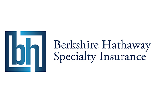 Accident and Health Claims Consultant, BHSI