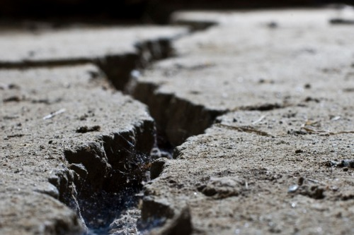 Darfield quake spurs decade of science and engineering