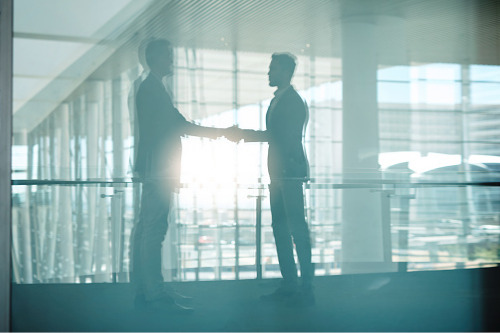 Vero and AMP renew partnership