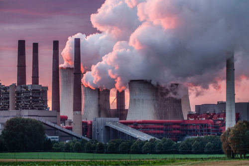 AA Insurance lays out carbon emission reduction targets