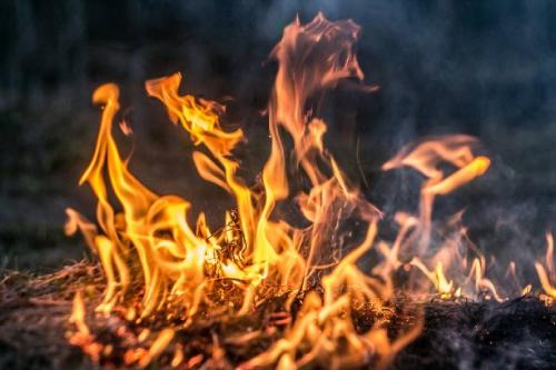 Soaring bushfire insurance premiums impede fire mitigation work