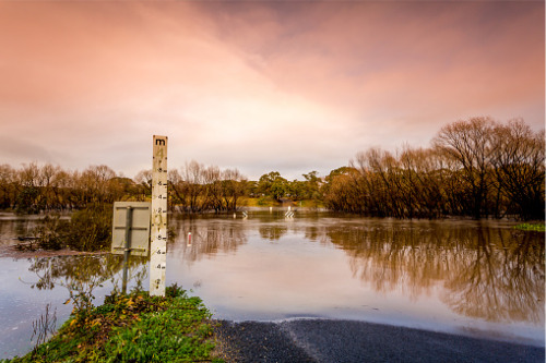 PERILS reveals initial industry loss for NSW and QLD floods