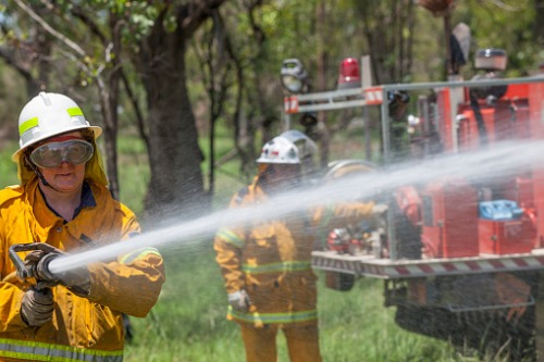 GB sends furry reinforcements to NSW Rural Fire Service